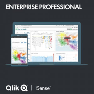 "Qlik Sense Enterprise ""Professional"" - Jahres Subscription"